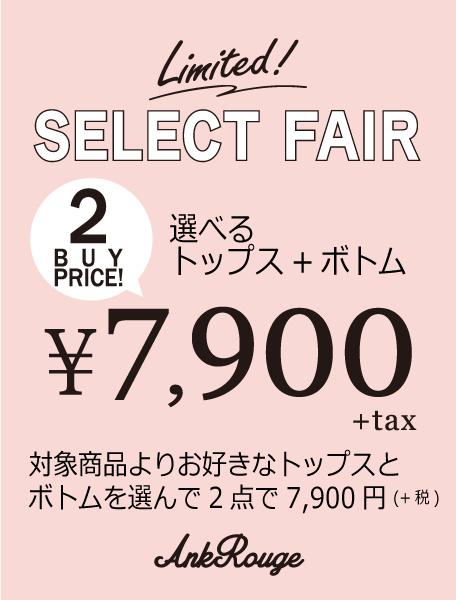 Limited Select Fair!
